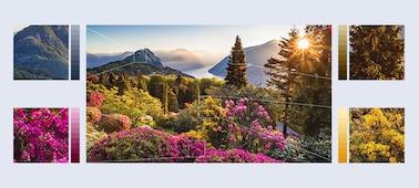 Изображение на изключително детайлни планински цветя с Object-based HDR Remaster
