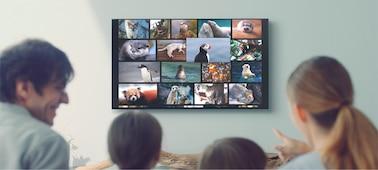 Снимка на XG95 | Пълноспектърен LED | 4K Ultra HD | Висок динамичен обхват (HDR) | Smart TV (Android TV)